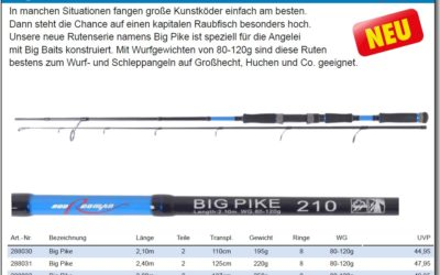 """BIG PIKE"" Spinnrute – NEU!!"